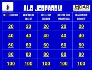 Asian longhorned beetle Jeopardy!
