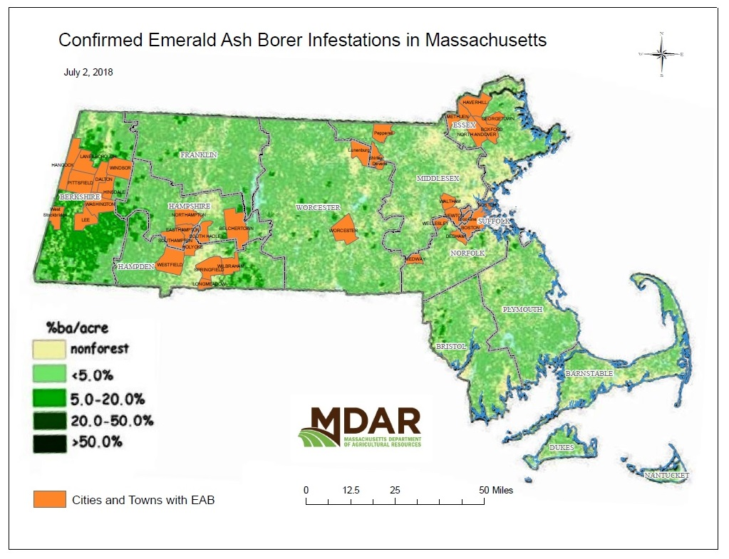 massachusetts introduced pests outreach blog